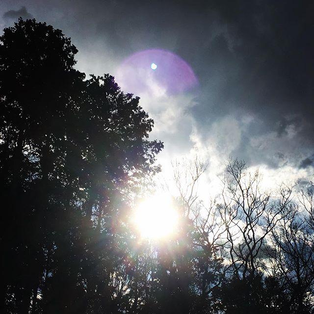 【ぐもにん2284】もう一歩、未来へ踏み込む。今日も「笑顔の選択」と。#goodmorning #beautifulsky #sunlight #sky #trees