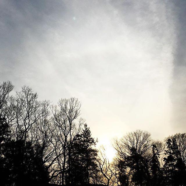 【ぐもにん2326】まぁいいか、どうでもいいかも大切な技術。今日も「笑顔の選択」と。#goodmorning #beautifulsky #trees #sky