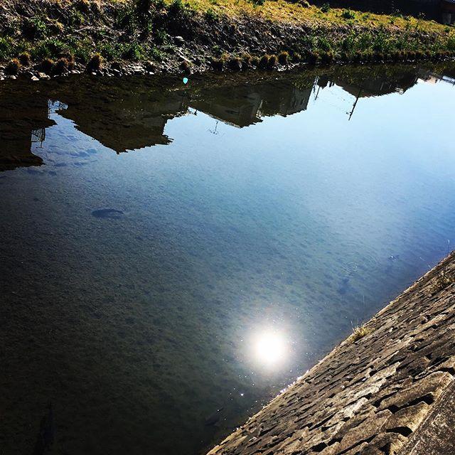 【ぐもにん2336】心の波を鎮めると、自分も周りも見えてくる。今日も「笑顔の選択」と。#goodmorning #beautifulsky #river #sunlight