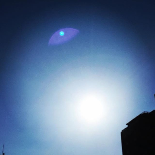 【ぐもにん2348】頭のざわめきが止まらない時は淡々とした作業に没頭する。気づくとざわめき止まってる。今日も「笑顔の選択」と。#goodmorning #sunlight #sun #bluesky #beautiful #sky #blue