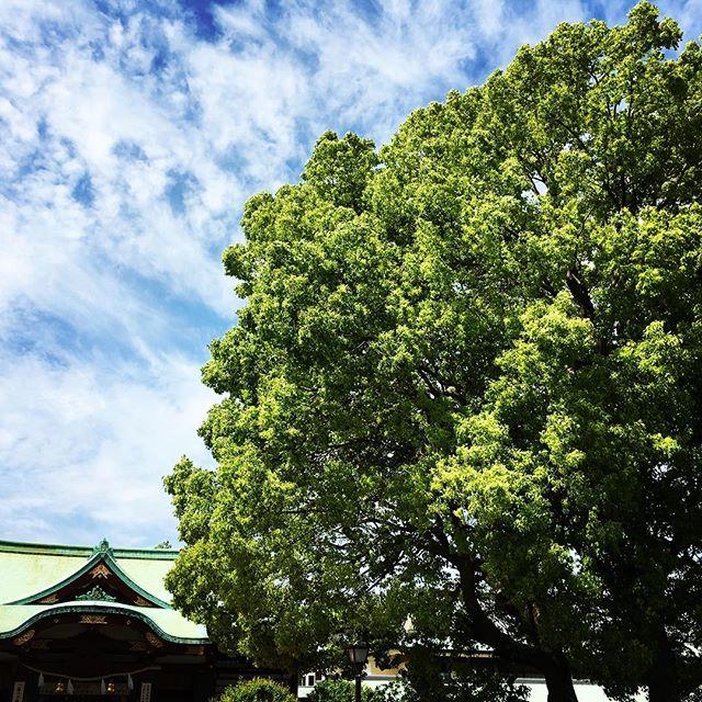 【ぐもにん2391】いちばん大切なことを見直す日に。今日も「笑顔の選択」と。#goodmorning #tree #shrine #green #blue #bluesky