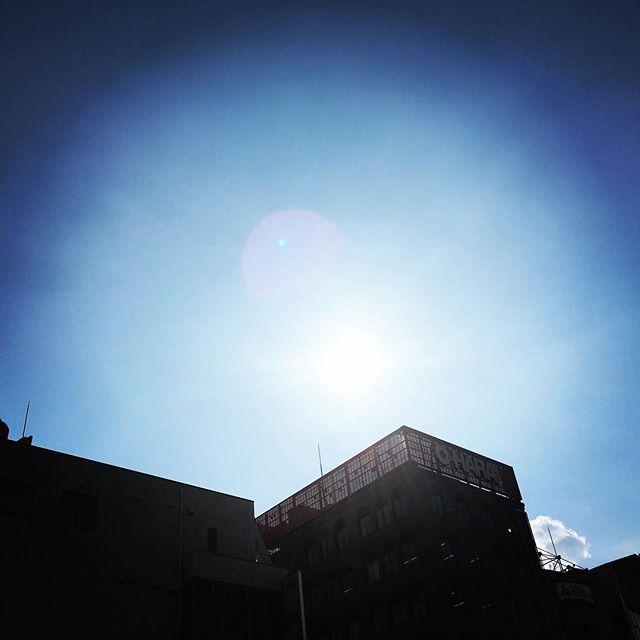 【ぐもにん2400】光を浴びて光を出して世界を照らす。今日も「笑顔の選択」と。#goodmorning #bluesky #sunlight #blue #sky #sun