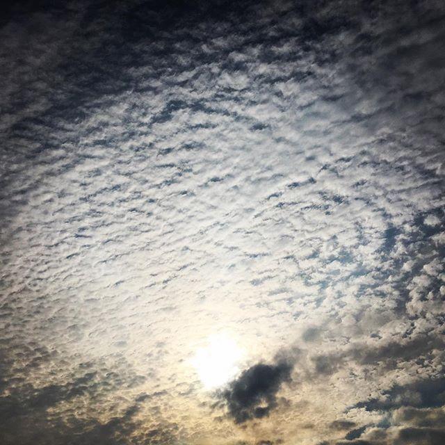 【ぐもにん2421】広がる想い。純粋な愛で満たす。今日も「笑顔の選択」と。#goodmorning #cloudart #cloud #beautiful #sky #beautifulsky