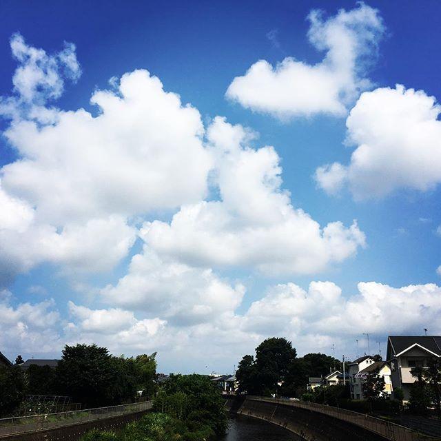 【ぐもにん2463】こころふるえる時を重ねるためにここにいる。今日も「笑顔の選択」と。#goodmorning #beautifulsky #beautiful #sky #cloud #cloudart #bluesky #blue