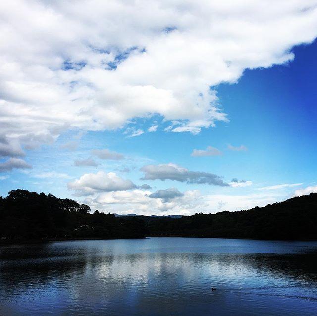 【ぐもにん2523】見たい位置から見たいものを見る。今日も「笑顔の選択」と。#goodmorning #bluesky #beautiful #clouds #beautifulsky #sky #blue #pond #takamatsupond #高松の池 #おはよう