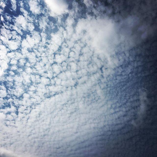 【ぐもにん2549】続けるもやめるもひと休みも、すべて自分のさじ加減。今日も「笑顔の選択」と。#goodmorning #clouds #cloudart #sky #beautiful #beautifulsky #おはよう