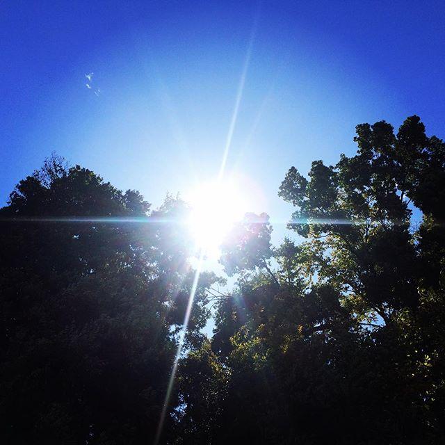 【ぐもにん2564】事実をみつめて湧き上がる思いに自分が映る。今日も「笑顔の選択」と。#goodmorning #bluesky #beautifulsky #blue #beautiful #sky #sunlight #おはよう