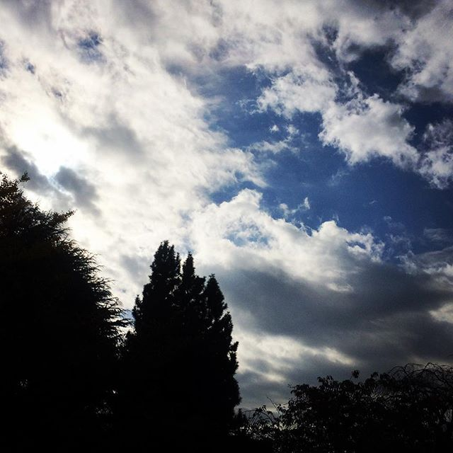【ぐもにん2567】やりたいを形にする。試しながら変えながら。今日も「笑顔の選択」と。#goodmorning #beautifulsky #beautiful #sky #trees #おはよう