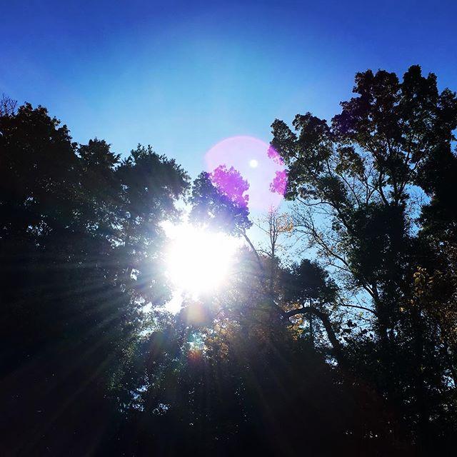 【ぐもにん2600】選んで委ねて自分を生きる。今日も「笑顔の選択」と。#goodmorning #bluesky #beautifulsky #blue #beautiful #sky #trees #sunshine #おはよう