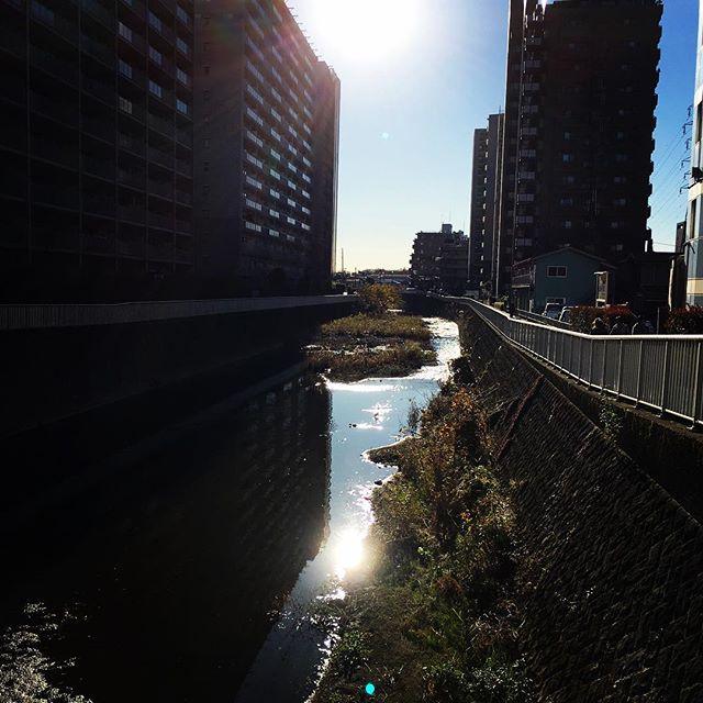 【ぐもにん2607】堂々と今を生きる。今日も「笑顔の選択」と。#goodmorning #bluesky #blue #sky #beautiful #sunshine #おはよう