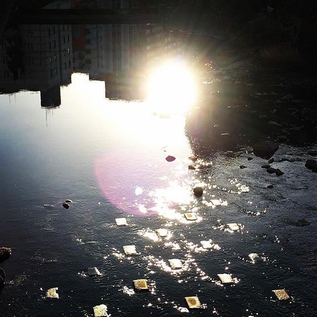 【ぐもにん2039】朗らかに、和やかに。今日も「笑顔の選択」と。#goodmorning #mirror #sunshine #sun #photography #iphonephotography #おはよう