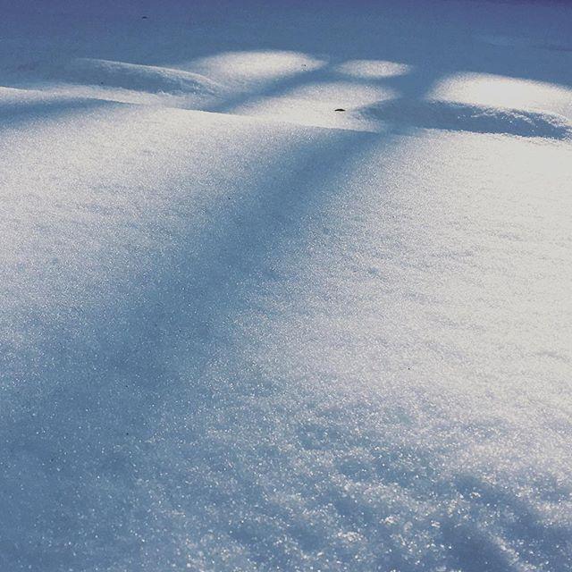 【ぐもにん2049】いつでもまっさらな自分から。今日も「笑顔の選択」と。#goodmorning #snow #beautiful #white #photography #iphonephotography #おはよう