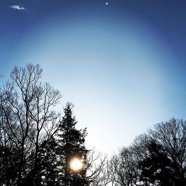 【ぐもにん2050】楽しさも喜びも心配も自分から生み出されるもの。今日も「笑顔の選択」と。#goodmorning #beautifulsky #bluesky #beautiful #blue #sky #trees #silhouette #おはよう