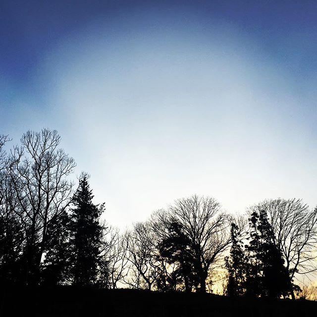 【ぐもにん2675】いらない力を抜いて全力で。今日も「笑顔の選択」と。#goodmorning #beautifulsky #beautiful #sky #silhouette #trees #photography #photo #iphonephotography #おはよう